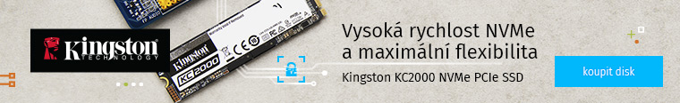 Kingston KC2000